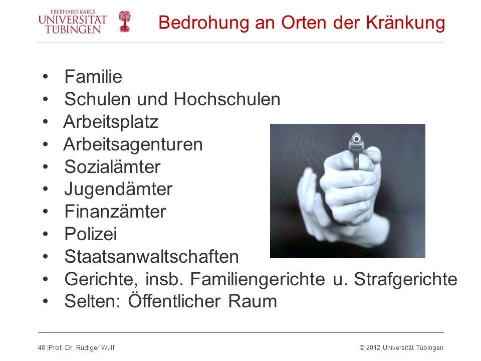 48  Prof. Dr. Rüdiger Wulf© 2012 Universität Tübingen Bedrohung an Orten der Kränkung Familie Schulen und Hochschulen Arbeitsplatz Arbeitsagenturen So