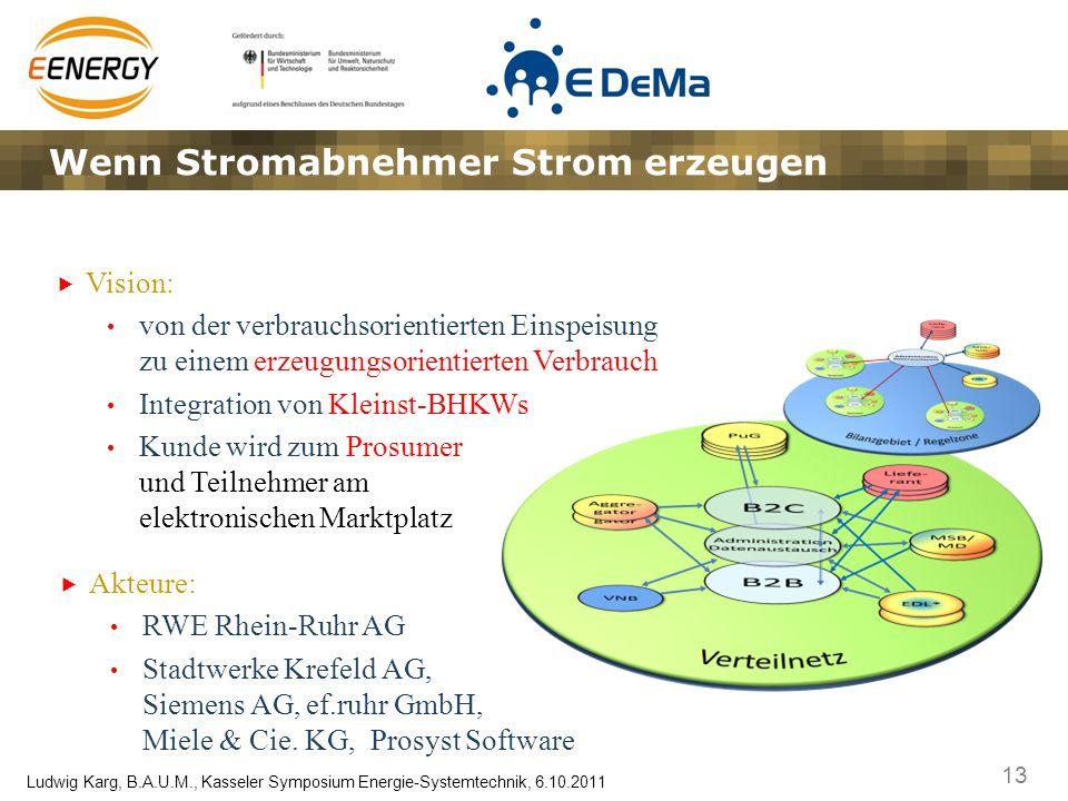 13 Ludwig Karg, B.A.U.M., Kasseler Symposium Energie-Systemtechnik, 6.10.2011 Wenn Stromabnehmer Strom erzeugen Vision: von der verbrauchsorientierten