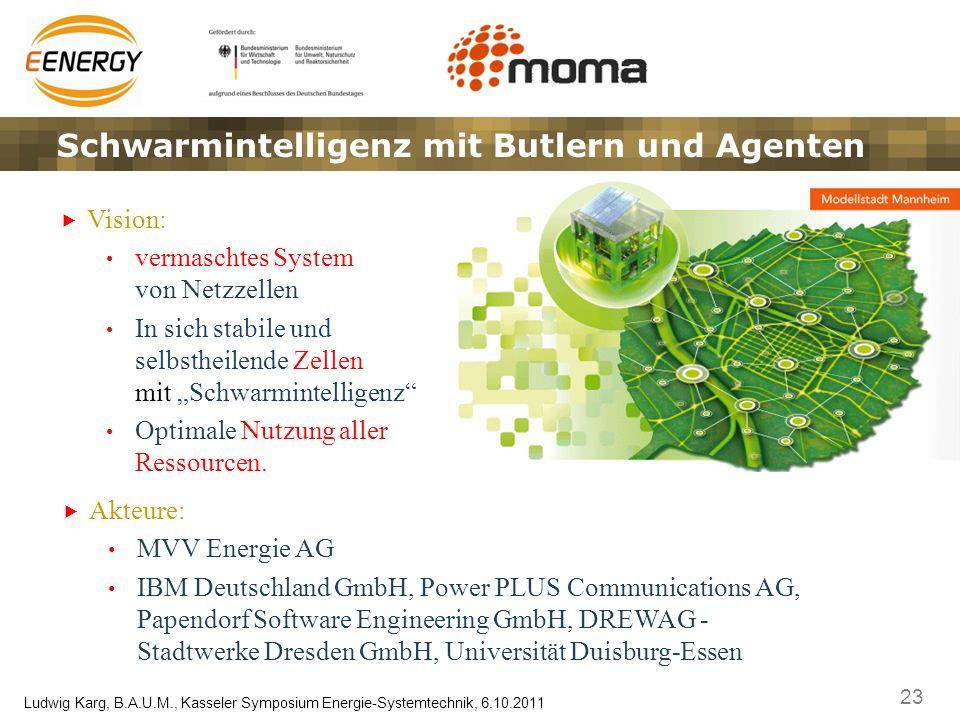 23 Ludwig Karg, B.A.U.M., Kasseler Symposium Energie-Systemtechnik, 6.10.2011 Schwarmintelligenz mit Butlern und Agenten Vision: vermaschtes System vo