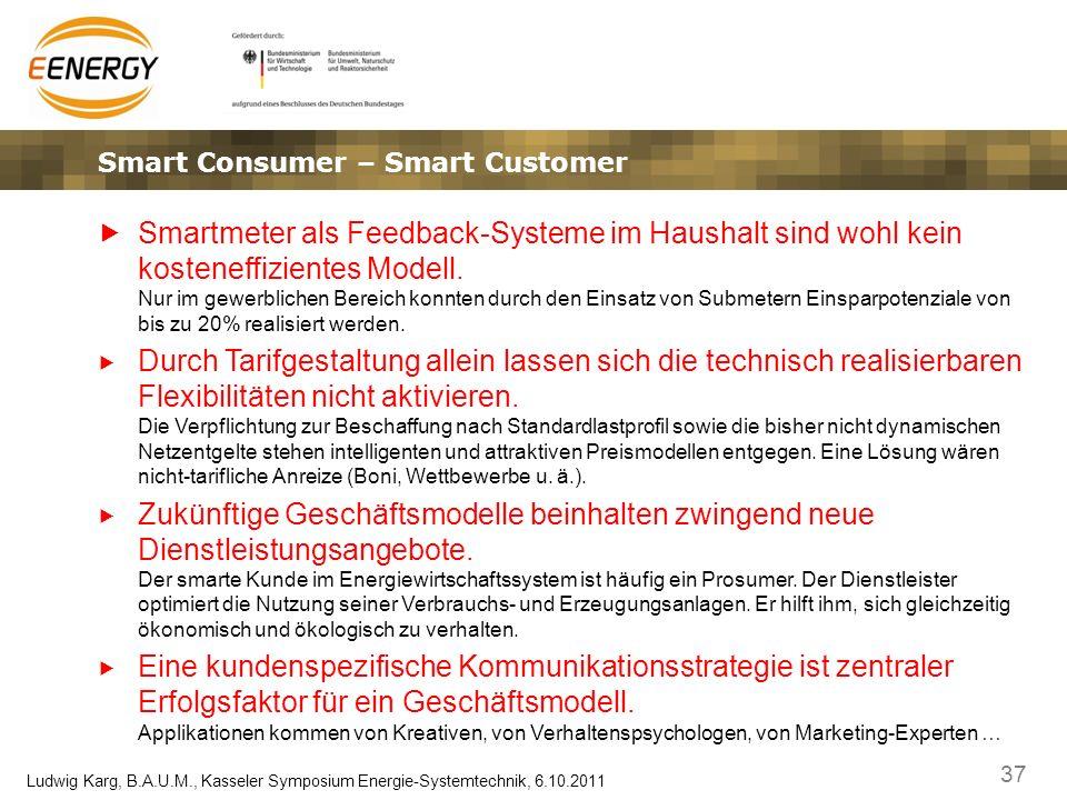 37 Ludwig Karg, B.A.U.M., Kasseler Symposium Energie-Systemtechnik, 6.10.2011 Smart Consumer – Smart Customer Smartmeter als Feedback-Systeme im Haush