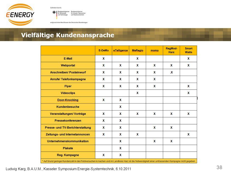 38 Ludwig Karg, B.A.U.M., Kasseler Symposium Energie-Systemtechnik, 6.10.2011 Vielfältige Kundenansprache