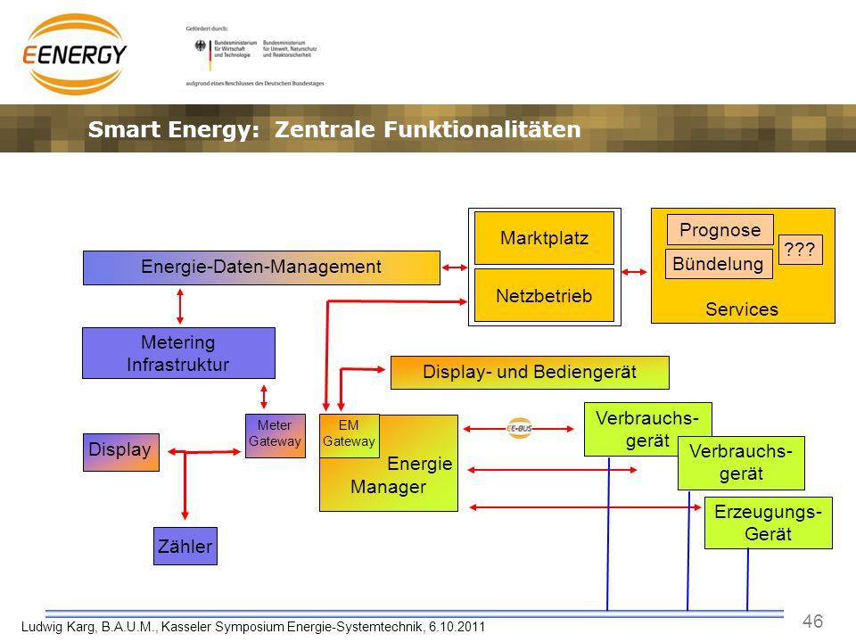46 Ludwig Karg, B.A.U.M., Kasseler Symposium Energie-Systemtechnik, 6.10.2011 Services Energie Manager Zähler Prognose Energie-Daten-Management Meteri