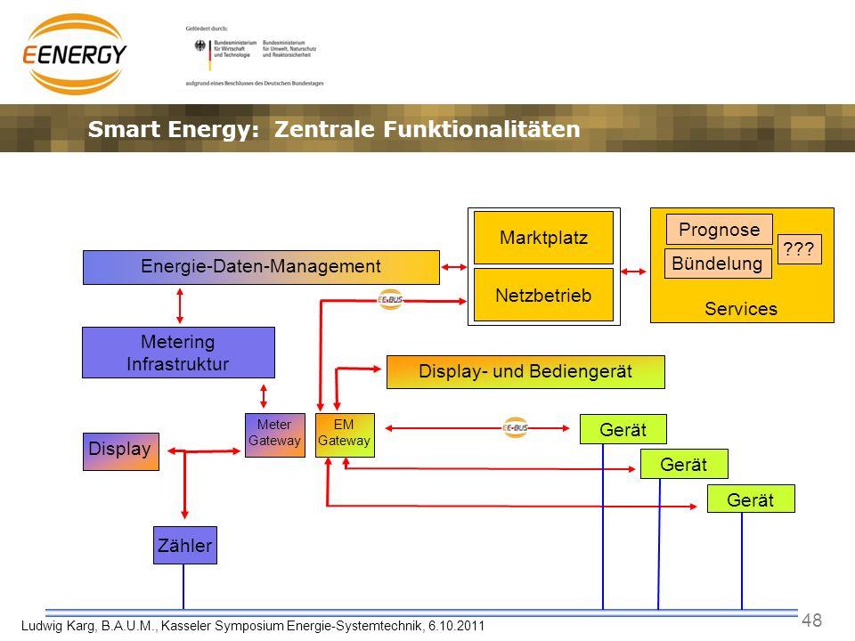48 Ludwig Karg, B.A.U.M., Kasseler Symposium Energie-Systemtechnik, 6.10.2011 Services Zähler Prognose Energie-Daten-Management Metering Infrastruktur