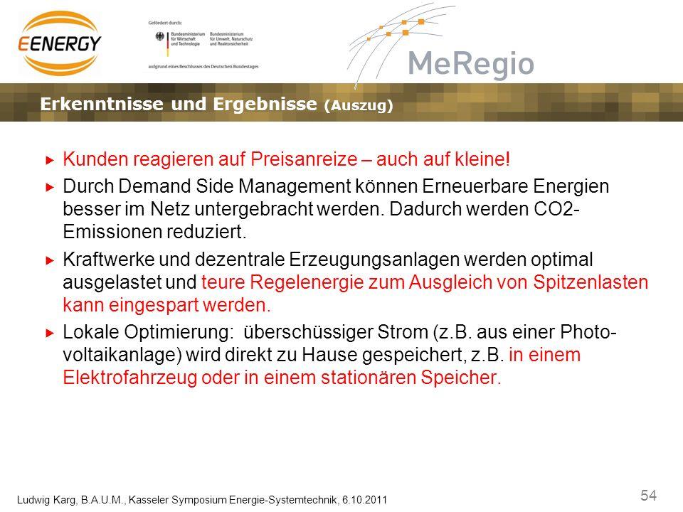 54 Ludwig Karg, B.A.U.M., Kasseler Symposium Energie-Systemtechnik, 6.10.2011 Ergebnisse, Erkenntnisse und EffekteLösungsansätze – Marktplatz und Gate