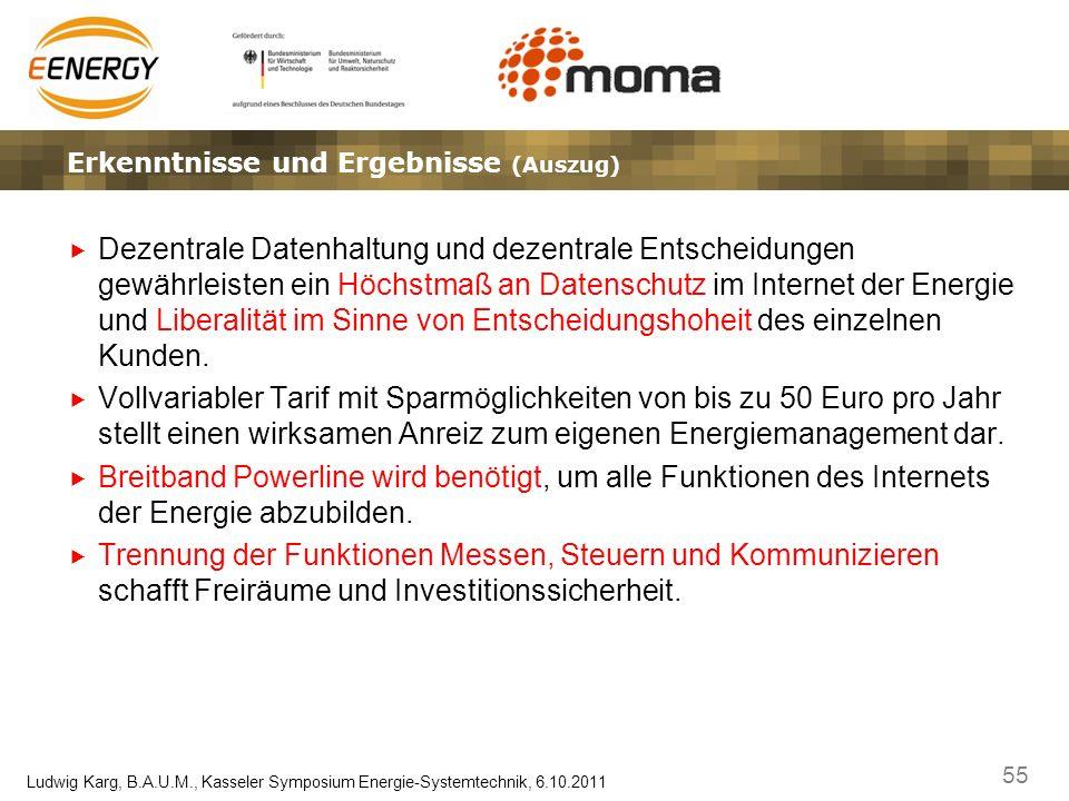 55 Ludwig Karg, B.A.U.M., Kasseler Symposium Energie-Systemtechnik, 6.10.2011 Ergebnisse, Erkenntnisse und EffekteLösungsansätze – Marktplatz und Gate
