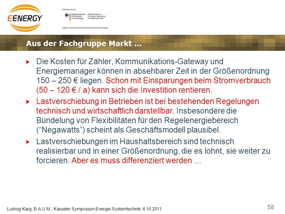 58 Ludwig Karg, B.A.U.M., Kasseler Symposium Energie-Systemtechnik, 6.10.2011 Die Kosten für Zähler, Kommunikations-Gateway und Energiemanager können