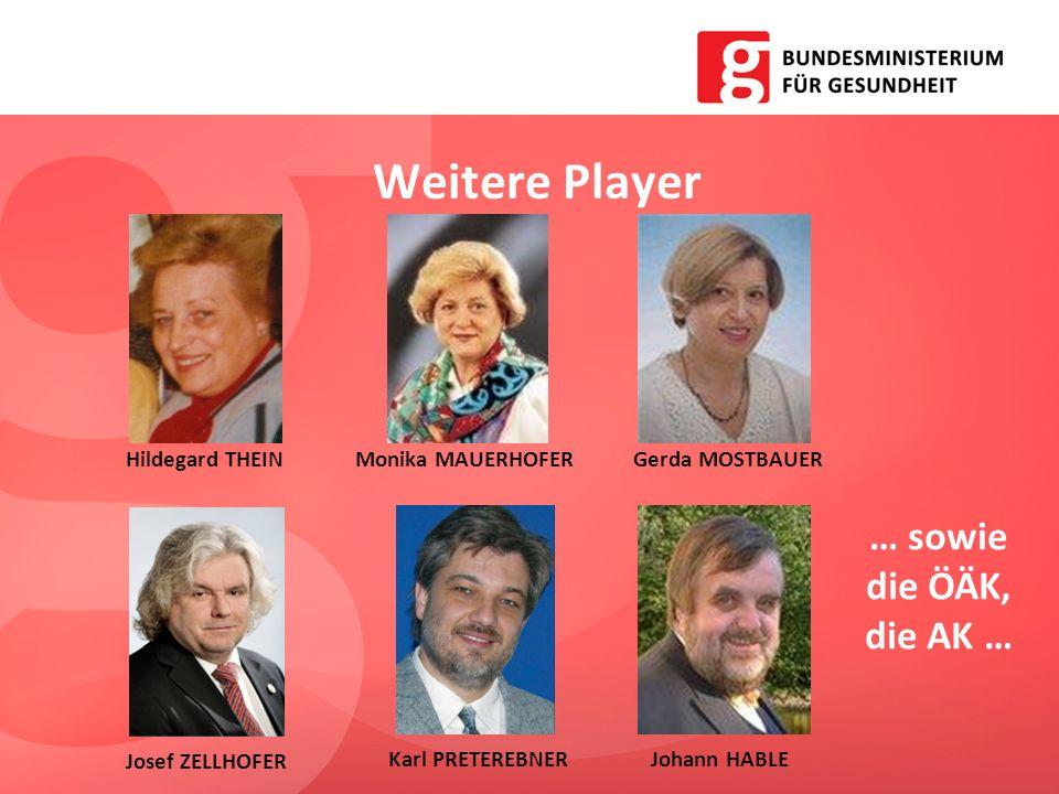 Weitere Player … sowie die ÖÄK, die AK … Hildegard THEINGerda MOSTBAUERMonika MAUERHOFER Josef ZELLHOFER Karl PRETEREBNERJohann HABLE