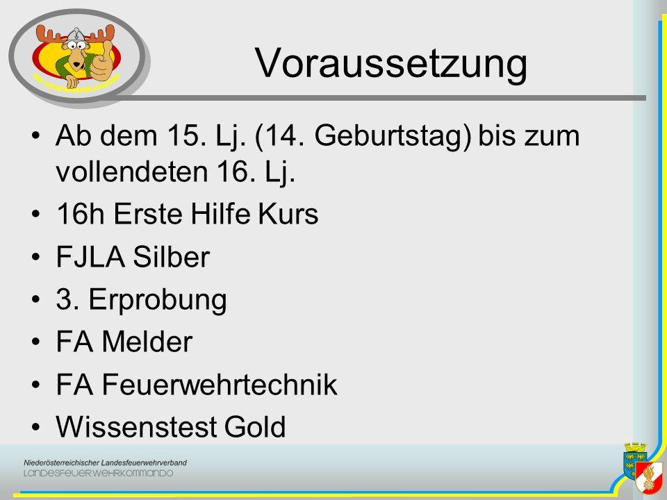 Voraussetzung Ab dem 15. Lj. (14. Geburtstag) bis zum vollendeten 16. Lj. 16h Erste Hilfe Kurs FJLA Silber 3. Erprobung FA Melder FA Feuerwehrtechnik