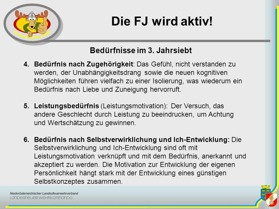 Die FJ wird aktiv! 4.Bedürfnis nach Zugehörigkeit: Das Gefühl, nicht verstanden zu werden, der Unabhängigkeitsdrang sowie die neuen kognitiven Möglich