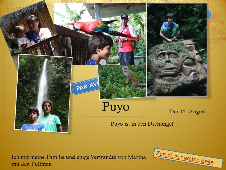 Puyo Puyo ist in den Dschungel Zurück zur ersten Seite Der 15.