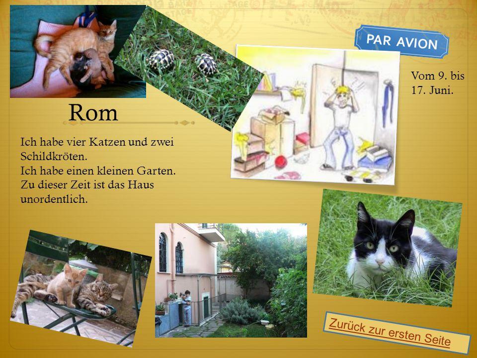 Rom Ich habe vier Katzen und zwei Schildkröten. Ich habe einen kleinen Garten.