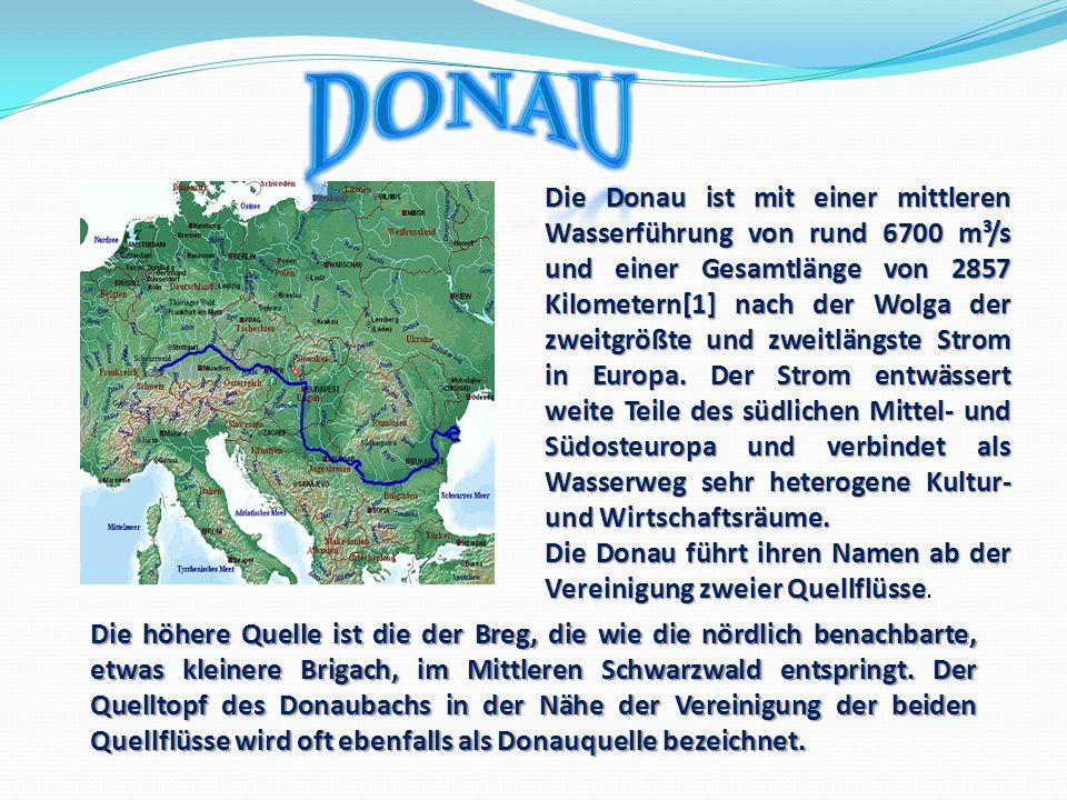 Das Mittelzentrum ist die zweitgrößte Stadt des Schwarzwald-Baar-Kreises.