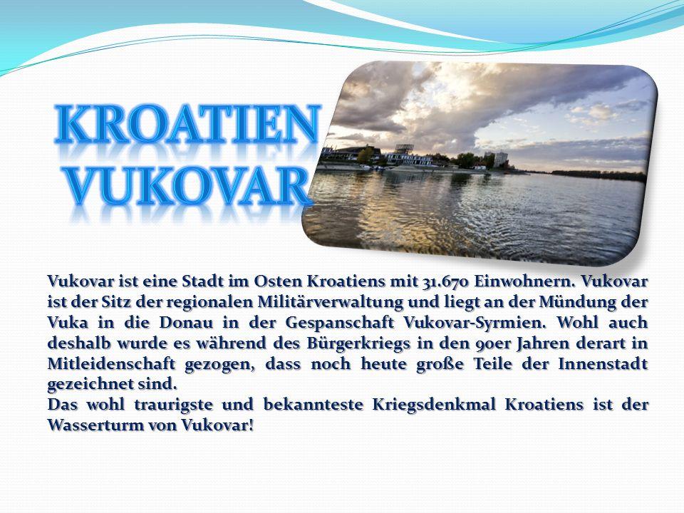 Nachleben - Sehenswerte Clubs befinden sich in schwimmenden Booten am Ufer der Save und der Donau.
