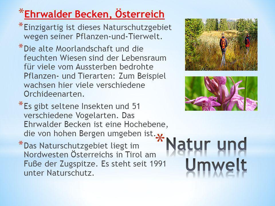 * Ehrwalder Becken, Österreich * Einzigartig ist dieses Naturschutzgebiet wegen seiner Pflanzen-und-Tierwelt. * Die alte Moorlandschaft und die feucht