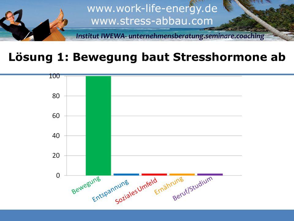 Lösung 1: Bewegung baut Stresshormone ab Beruf/Studium Bewegung Entspannung Soziales Umfeld Ernährung Beruf/Studium
