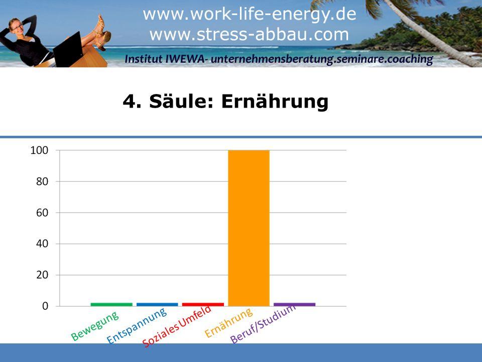 4. Säule: Ernährung Bewegung Entspannung Soziales Umfeld Ernährung Beruf/Studium