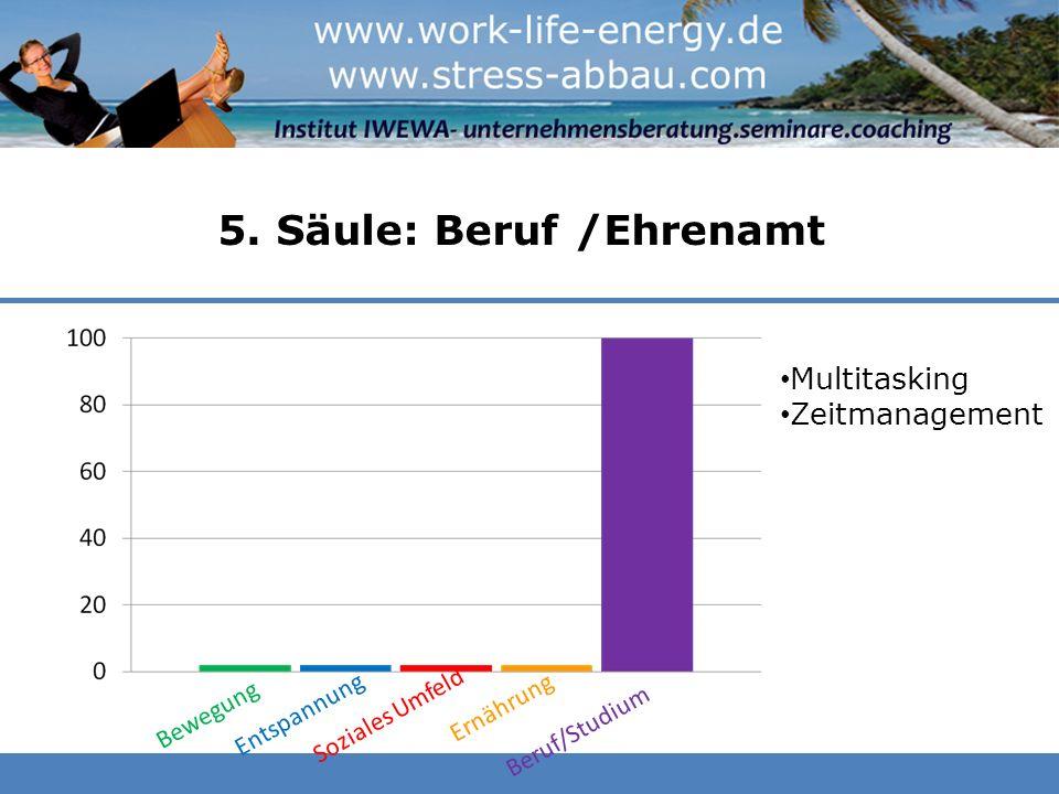 5. Säule: Beruf /Ehrenamt Bewegung Entspannung Soziales Umfeld Ernährung Beruf/Studium Multitasking Zeitmanagement