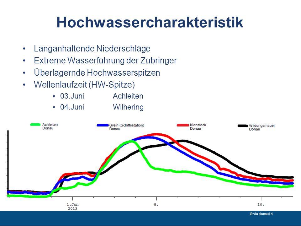 Hochwassercharakteristik Langanhaltende Niederschläge Extreme Wasserführung der Zubringer Überlagernde Hochwasserspitzen Wellenlaufzeit (HW-Spitze) 03