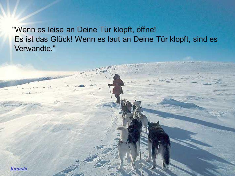 http://wissenschaft3000.wordpress.com/ Winterfreuden