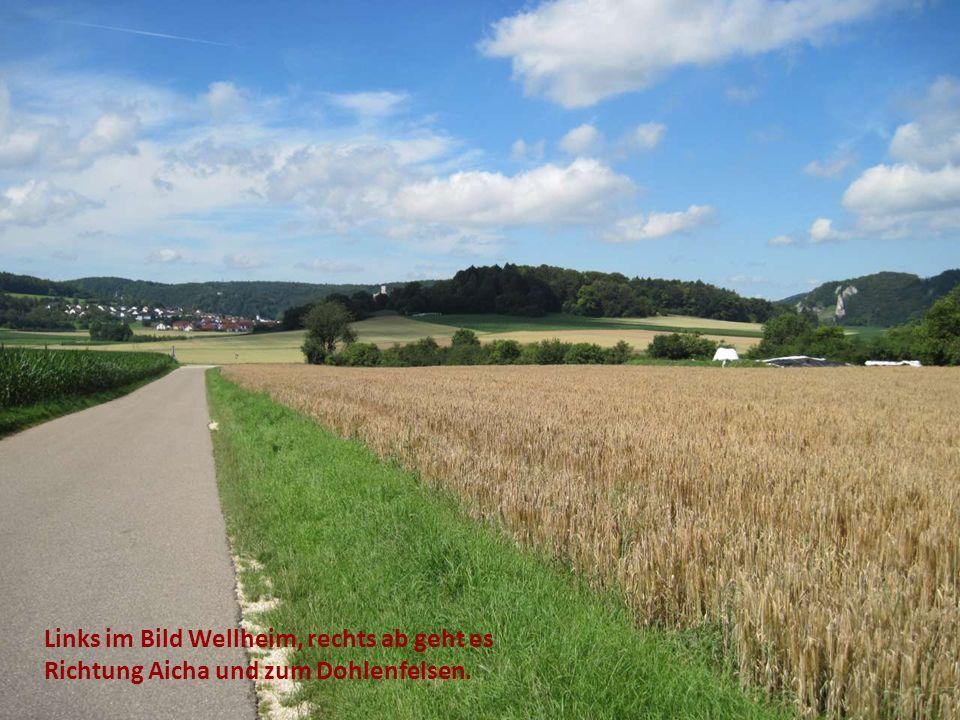 Links im Bild Wellheim, rechts ab geht es Richtung Aicha und zum Dohlenfelsen.