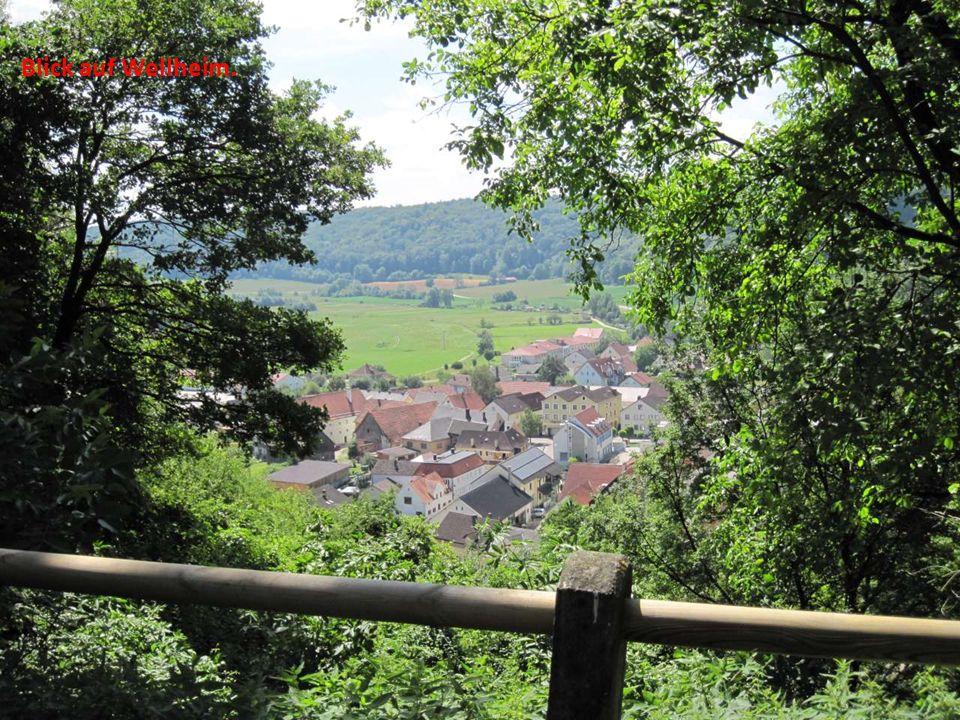 Blick auf Wellheim.