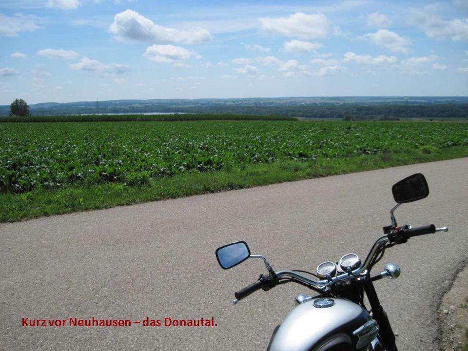 Kurz vor Neuhausen – das Donautal.