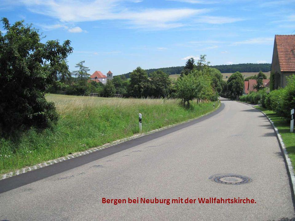Bergen bei Neuburg mit der Wallfahrtskirche.