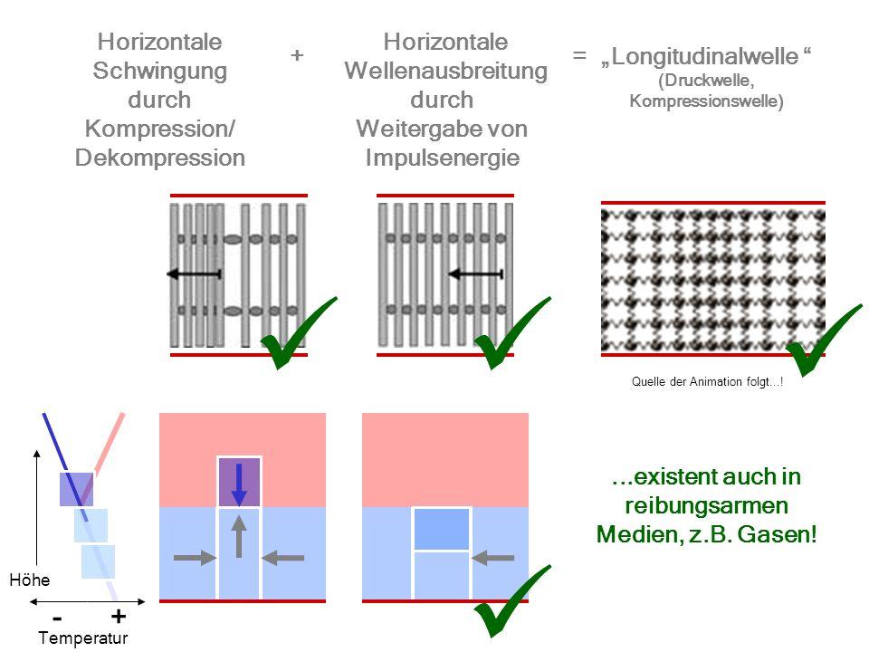 Horizontale Schwingung Horizontale Wellenausbreitung Longitudinalwelle (Druckwelle, Kompressionswelle) += durch Kompression/ Dekompression durch Weite