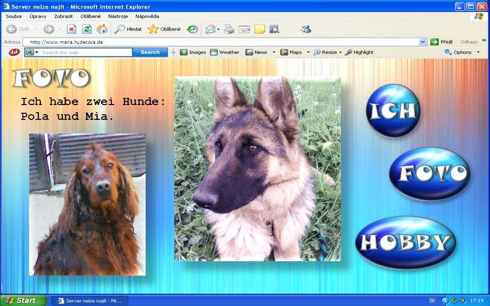 http://www.maria.hudecova.de Ich habe zwei Hunde: Pola und Mia.