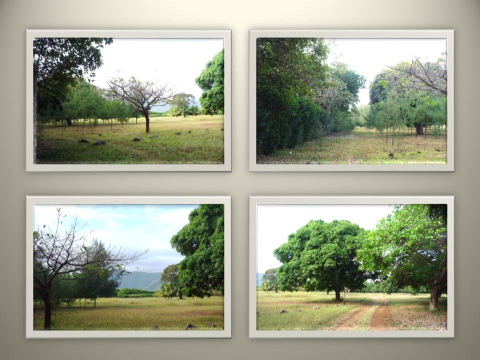 Vistas desde punto No. 1 Views from spot No. 1 Aussichten vom Punkt Nr. 1