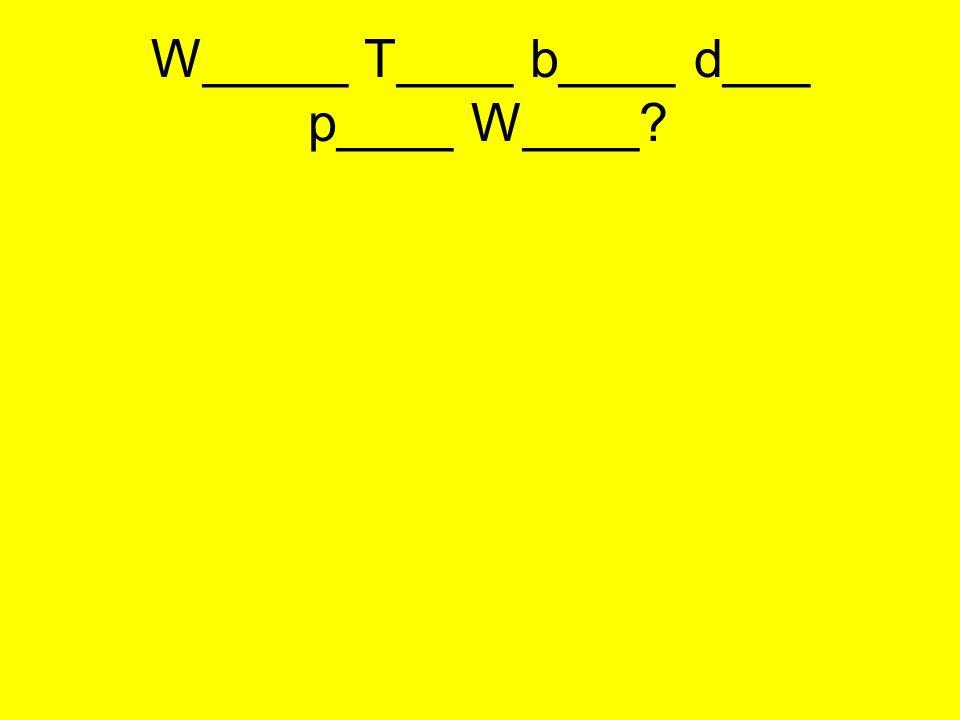 W_____ T____ b____ d___ p____ W____?