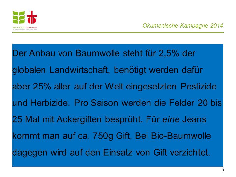Ökumenische Kampagne 2014 3 Der Anbau von Baumwolle steht für 2,5% der globalen Landwirtschaft, benötigt werden dafür aber 25% aller auf der Welt eing