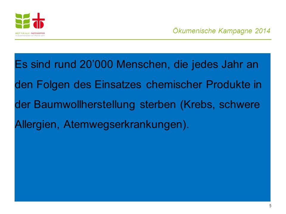 Ökumenische Kampagne 2014 5 Es sind rund 20000 Menschen, die jedes Jahr an den Folgen des Einsatzes chemischer Produkte in der Baumwollherstellung ste