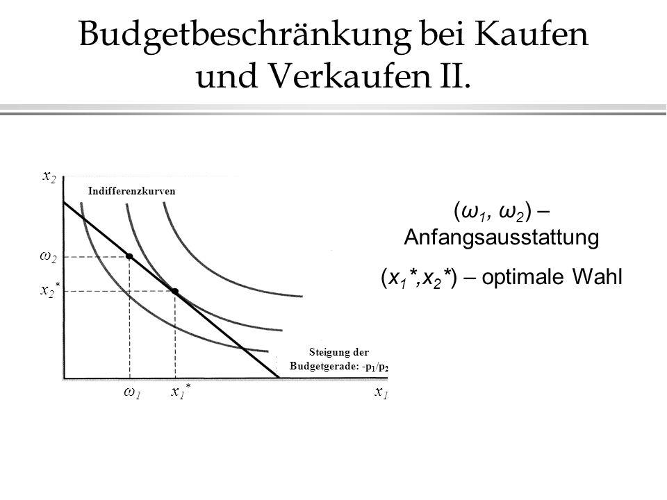 Veränderung der Anfangsausstattung Wenn der neue Bestand hat weniger Wert, als die Anfangsausstattung, dann Wenn der neue Bestand hat größerer Wert, als die Anfangsausstattung, dann x2x2 x1x1 x2x2 x1x1