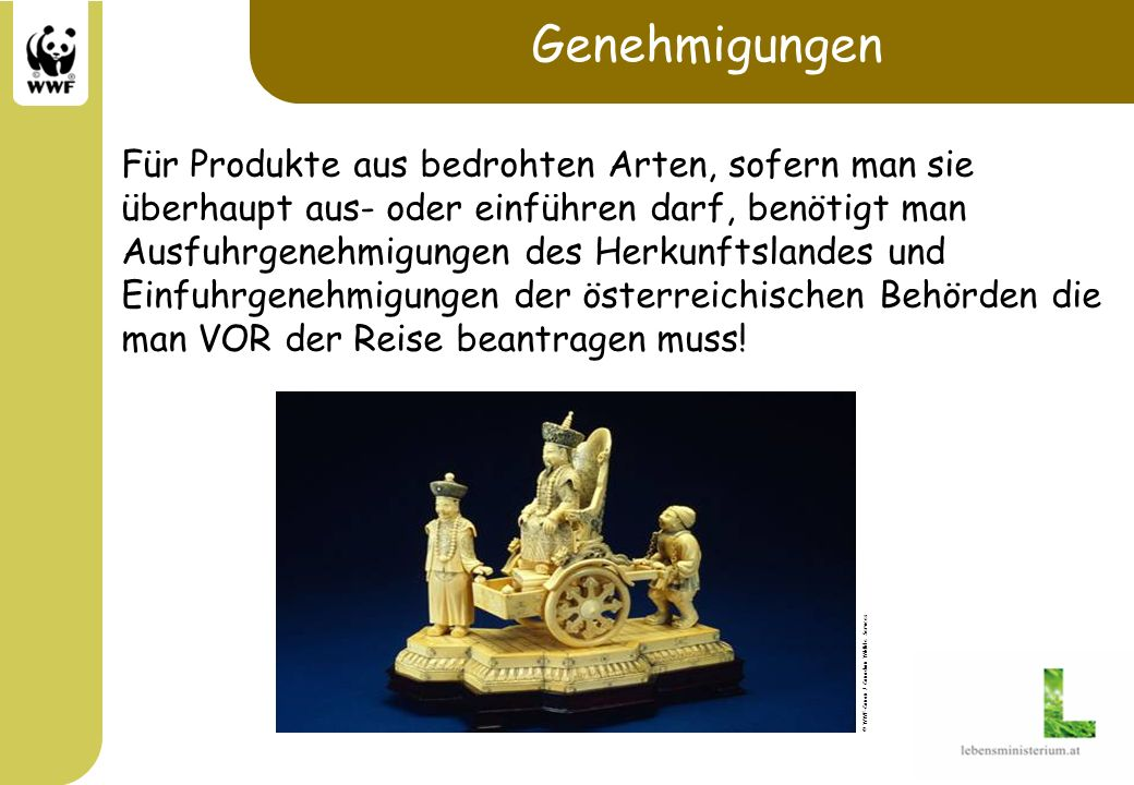Genehmigungen Für Produkte aus bedrohten Arten, sofern man sie überhaupt aus- oder einführen darf, benötigt man Ausfuhrgenehmigungen des Herkunftsland