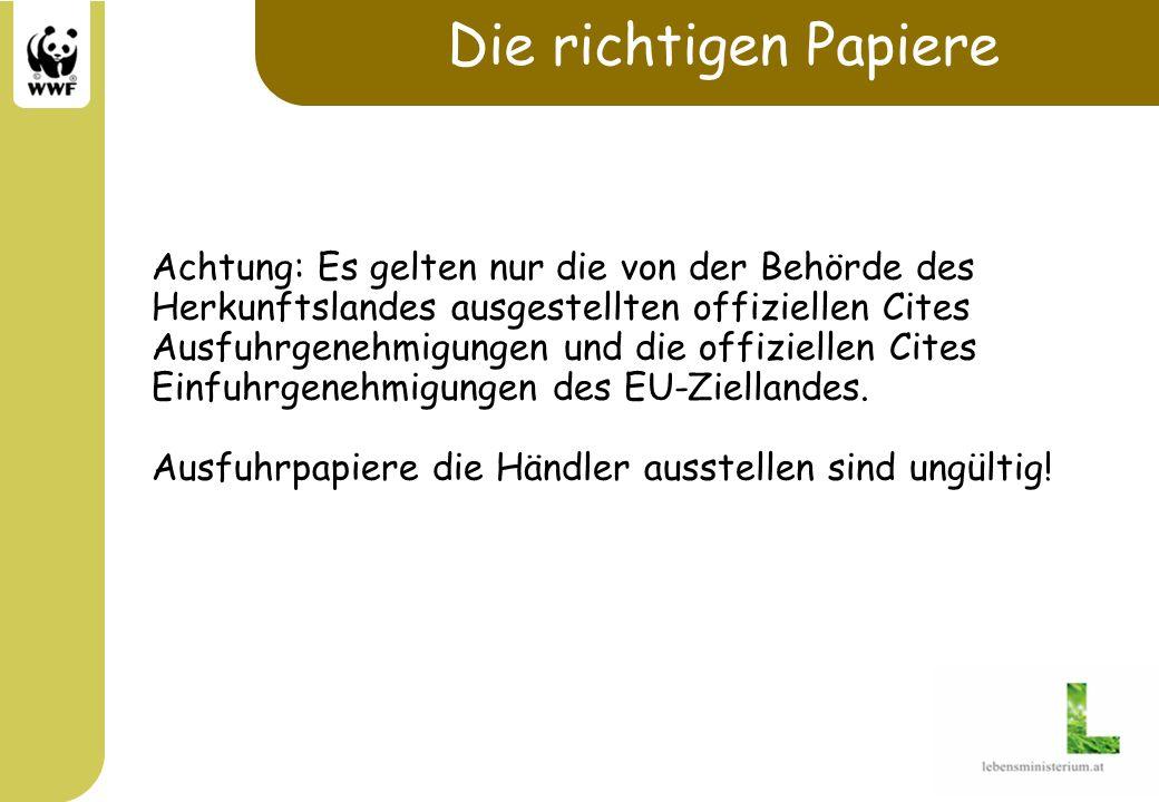 Die richtigen Papiere Achtung: Es gelten nur die von der Behörde des Herkunftslandes ausgestellten offiziellen Cites Ausfuhrgenehmigungen und die offi