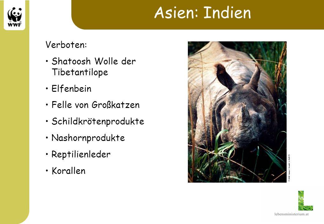 Asien: Indien Verboten: Shatoosh Wolle der Tibetantilope Elfenbein Felle von Großkatzen Schildkrötenprodukte Nashornprodukte Reptilienleder Korallen ©