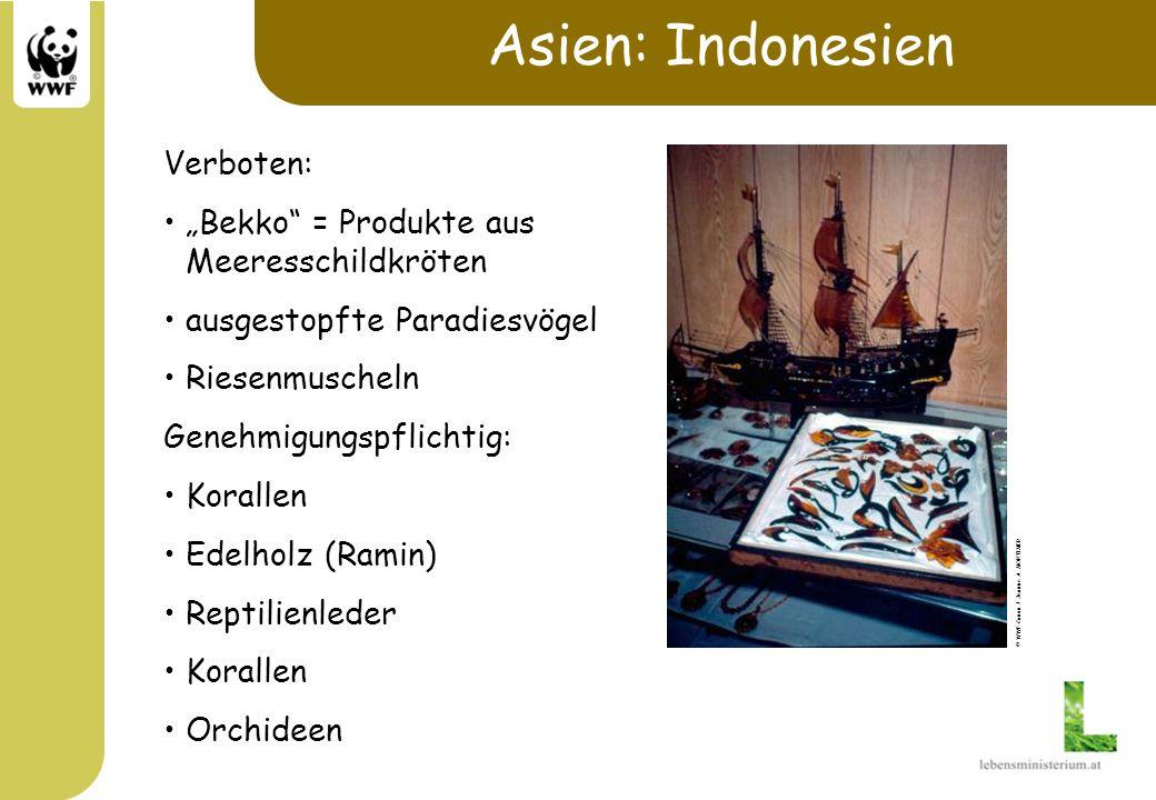 Asien: Indonesien Verboten: Bekko = Produkte aus Meeresschildkröten ausgestopfte Paradiesvögel Riesenmuscheln Genehmigungspflichtig: Korallen Edelholz