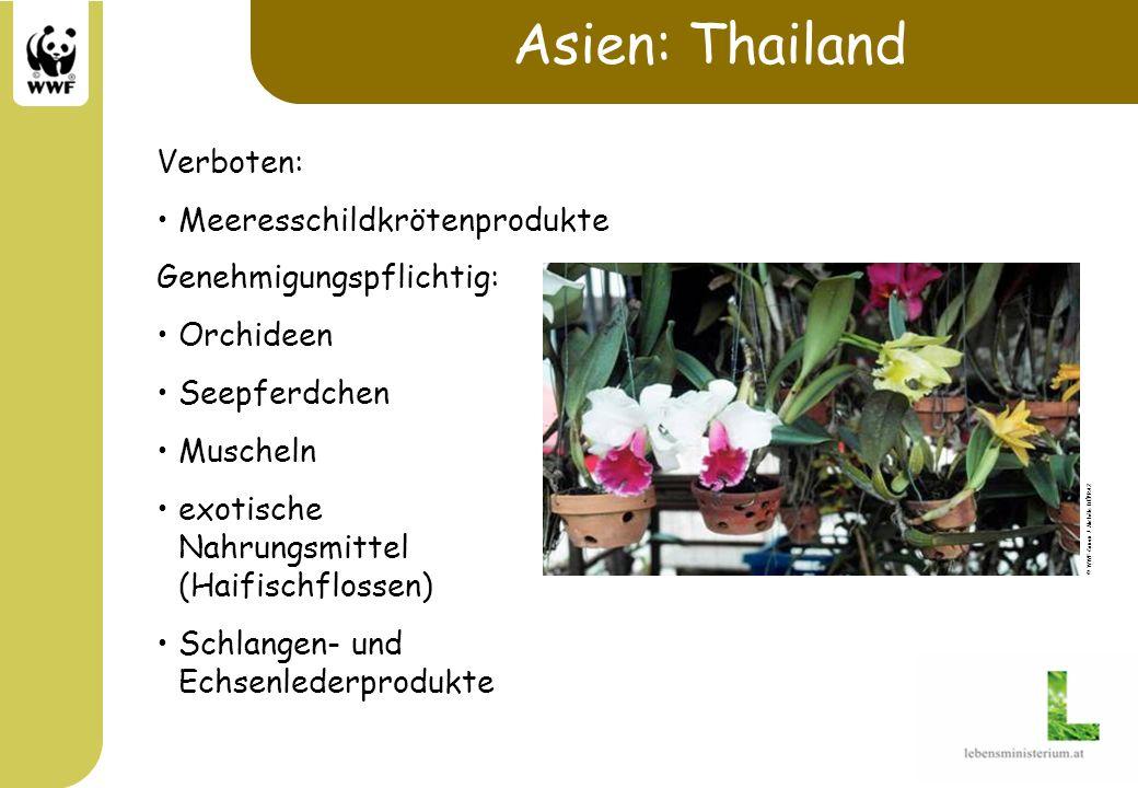 Asien: Thailand Verboten: Meeresschildkrötenprodukte Genehmigungspflichtig: Orchideen Seepferdchen Muscheln exotische Nahrungsmittel (Haifischflossen)