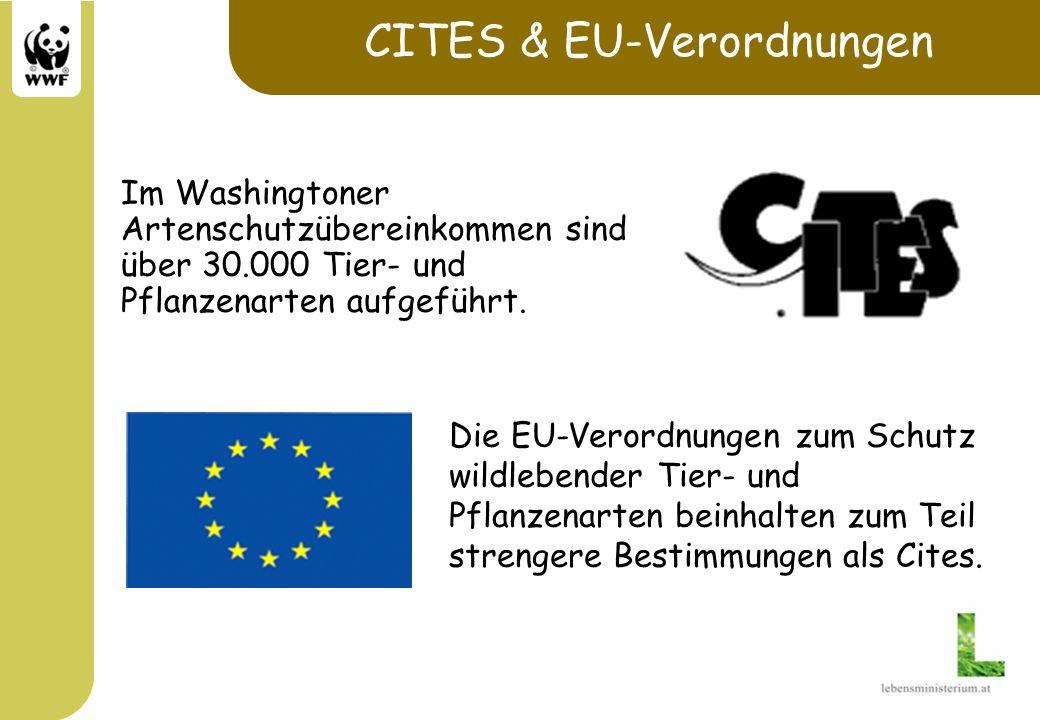 CITES & EU-Verordnungen Im Washingtoner Artenschutzübereinkommen sind über 30.000 Tier- und Pflanzenarten aufgeführt. Die EU-Verordnungen zum Schutz w