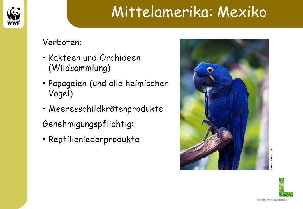 Mittelamerika: Mexiko Verboten: Kakteen und Orchideen (Wildsammlung) Papageien (und alle heimischen Vögel) Meeresschildkrötenprodukte Genehmigungspfli