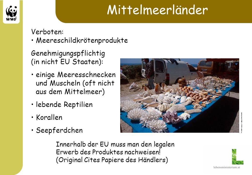 Mittelmeerländer Verboten: Meereschildkrötenprodukte Genehmigungspflichtig (in nicht EU Staaten): einige Meeresschnecken und Muscheln (oft nicht aus d