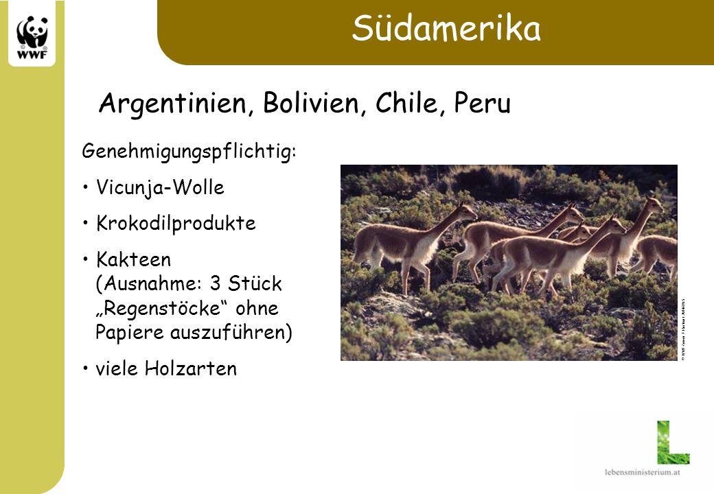 Südamerika Genehmigungspflichtig: Vicunja-Wolle Krokodilprodukte Kakteen (Ausnahme: 3 Stück Regenstöcke ohne Papiere auszuführen) viele Holzarten © WW