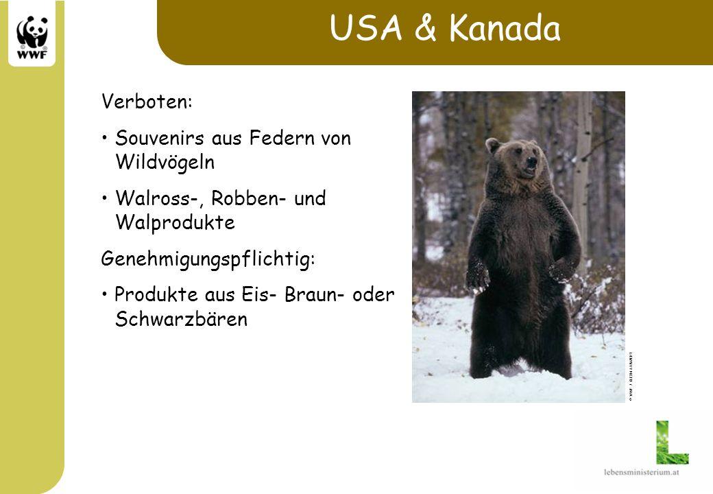 USA & Kanada Verboten: Souvenirs aus Federn von Wildvögeln Walross-, Robben- und Walprodukte Genehmigungspflichtig: Produkte aus Eis- Braun- oder Schw