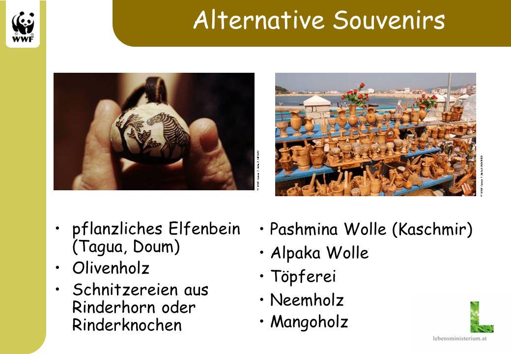 Alternative Souvenirs pflanzliches Elfenbein (Tagua, Doum) Olivenholz Schnitzereien aus Rinderhorn oder Rinderknochen Pashmina Wolle (Kaschmir) Alpaka