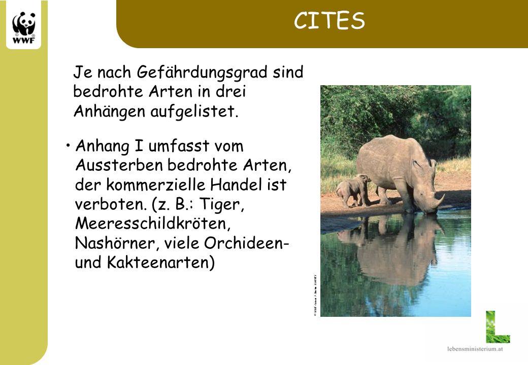 CITES Anhang I umfasst vom Aussterben bedrohte Arten, der kommerzielle Handel ist verboten. (z. B.: Tiger, Meeresschildkröten, Nashörner, viele Orchid