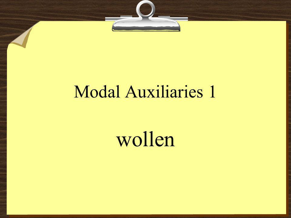 Modal Auxiliaries 1 wollen