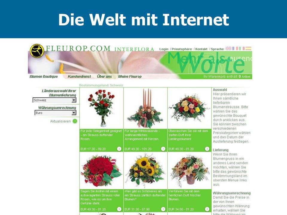 Die Welt mit Internet