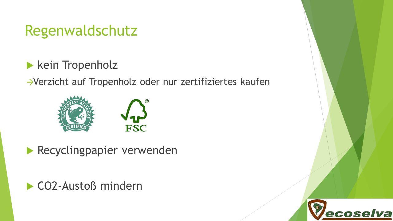 Regenwaldschutz kein Tropenholz Verzicht auf Tropenholz oder nur zertifiziertes kaufen Recyclingpapier verwenden CO2-Austoß mindern