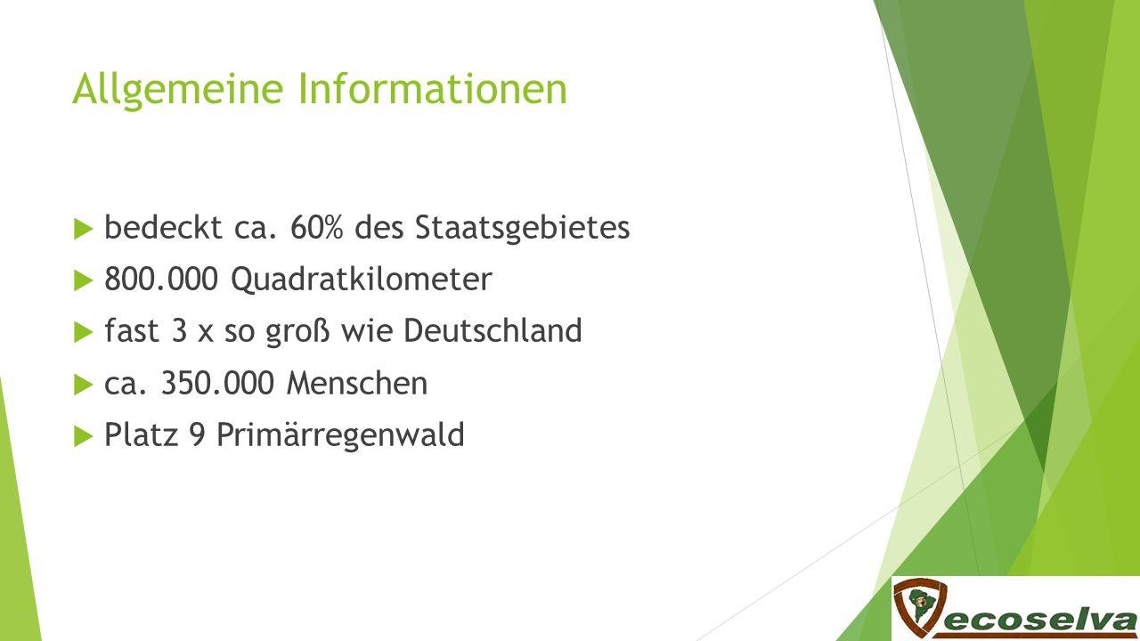 Allgemeine Informationen bedeckt ca. 60% des Staatsgebietes 800.000 Quadratkilometer fast 3 x so groß wie Deutschland ca. 350.000 Menschen Platz 9 Pri